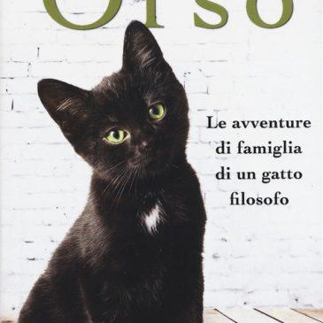 Orso, le avventure di famiglia di un gatto filosofo