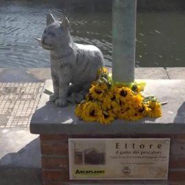 Una statua per Ettore, gatto pescatore di Viareggio